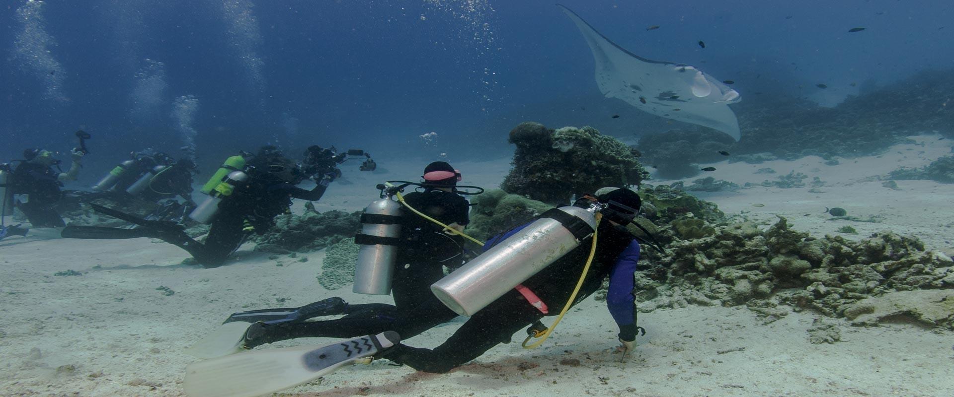 Clean Ocean Diver Workshop